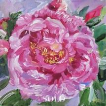 Pink-Peony-Painting-by-Susan-Pepler