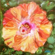 Susan-Pepler-Coral-Hibiscus-Painting-10x10