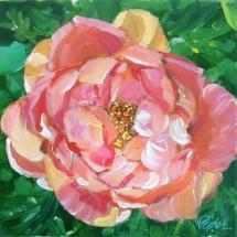 Susan-Pepler-Painting-English-Rose-10x10