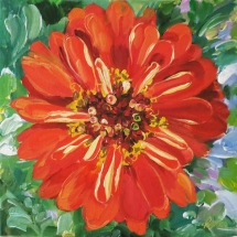 red-zinnia-painting-by-susan-pepler