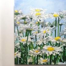 susan-pepler-toronto-artist-project-daisies