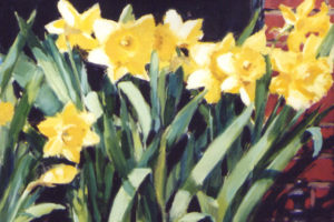 Daffodils-at-Barrington's-Painting-Susan-Pepler